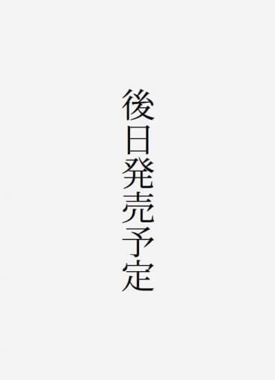 ヴィンダウス・エンジン 十三不塔