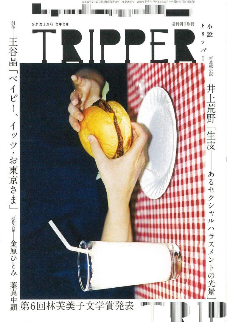 第6回 林芙美子文学賞